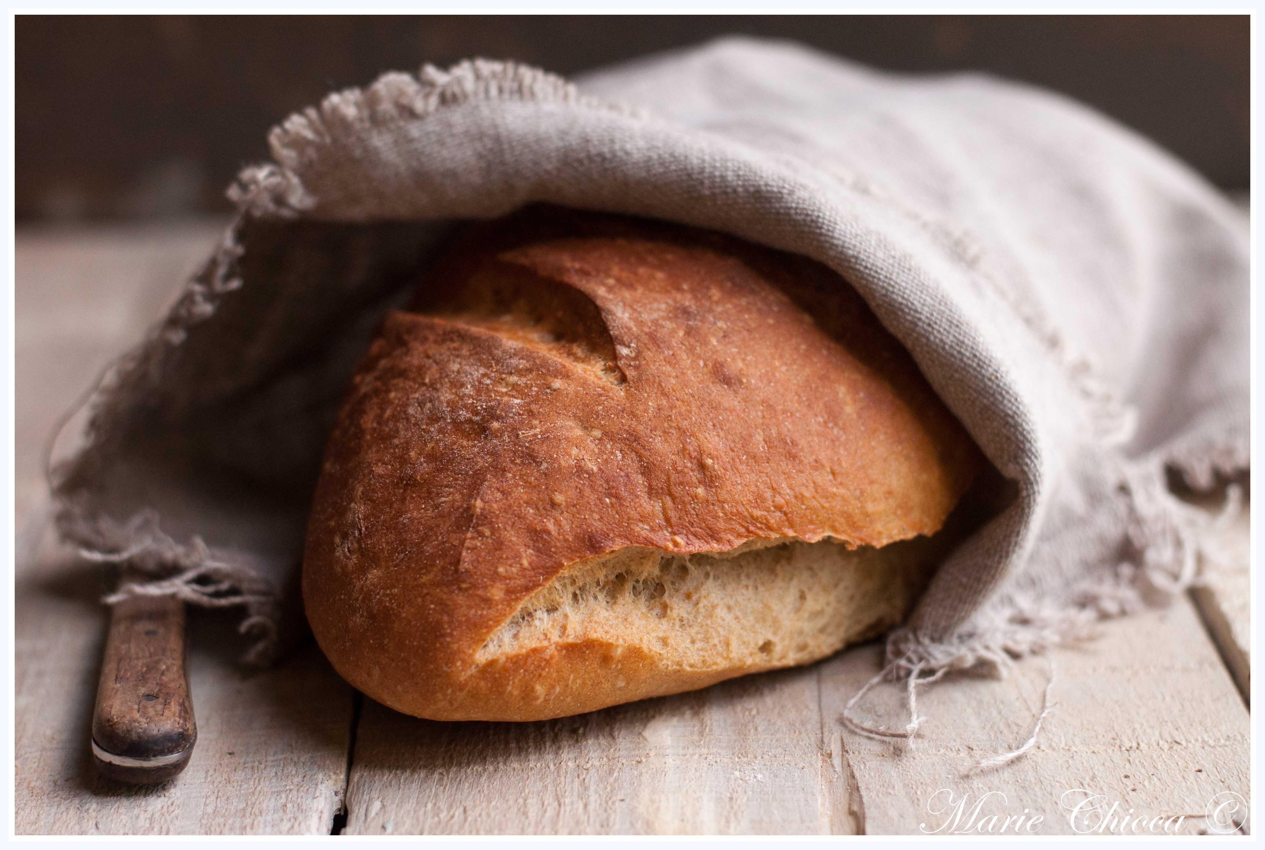 16-pain-d-epeautre-completa-la-levure-de-boulanger-2