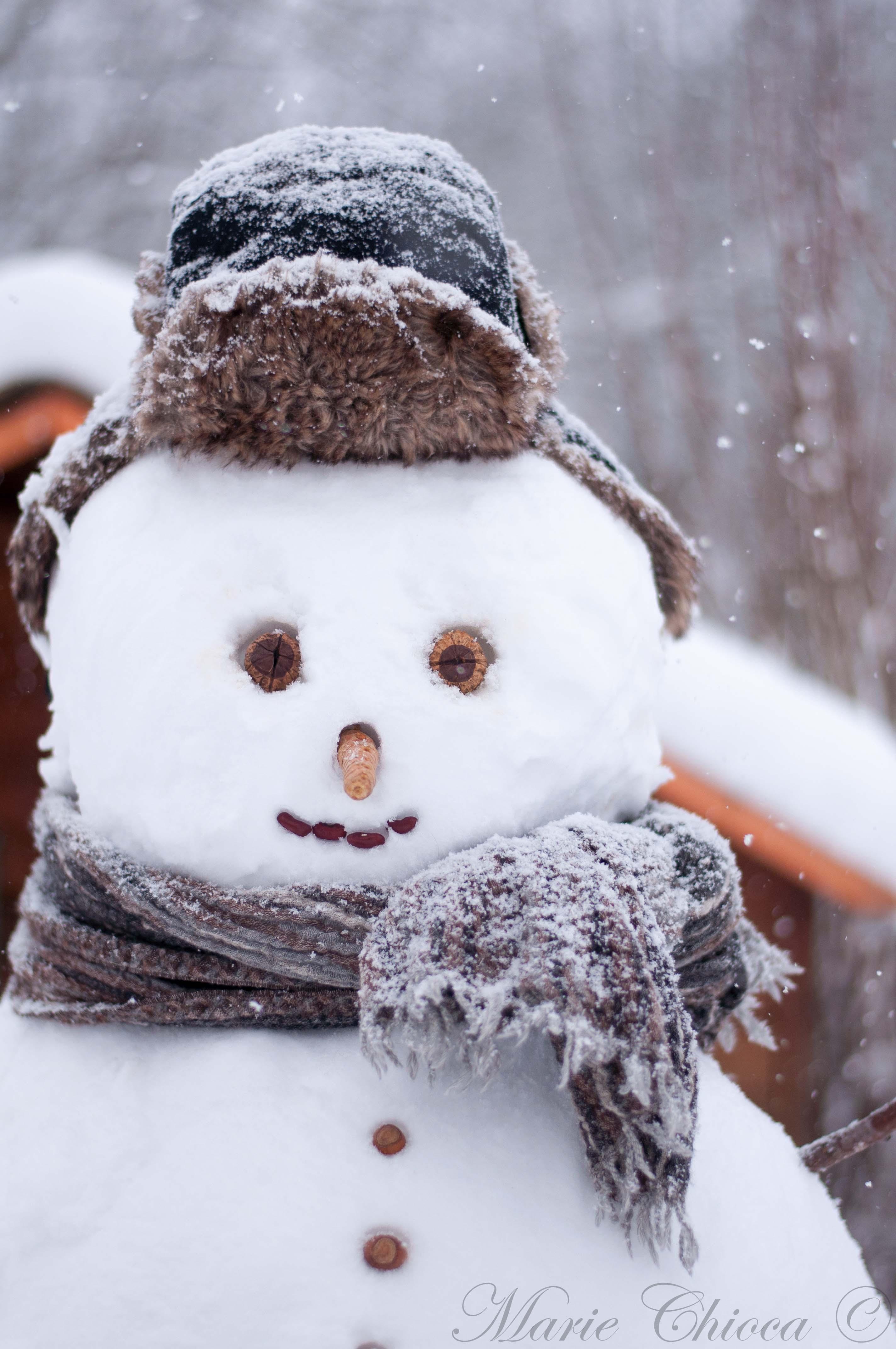 oeufs bonhomme de neige