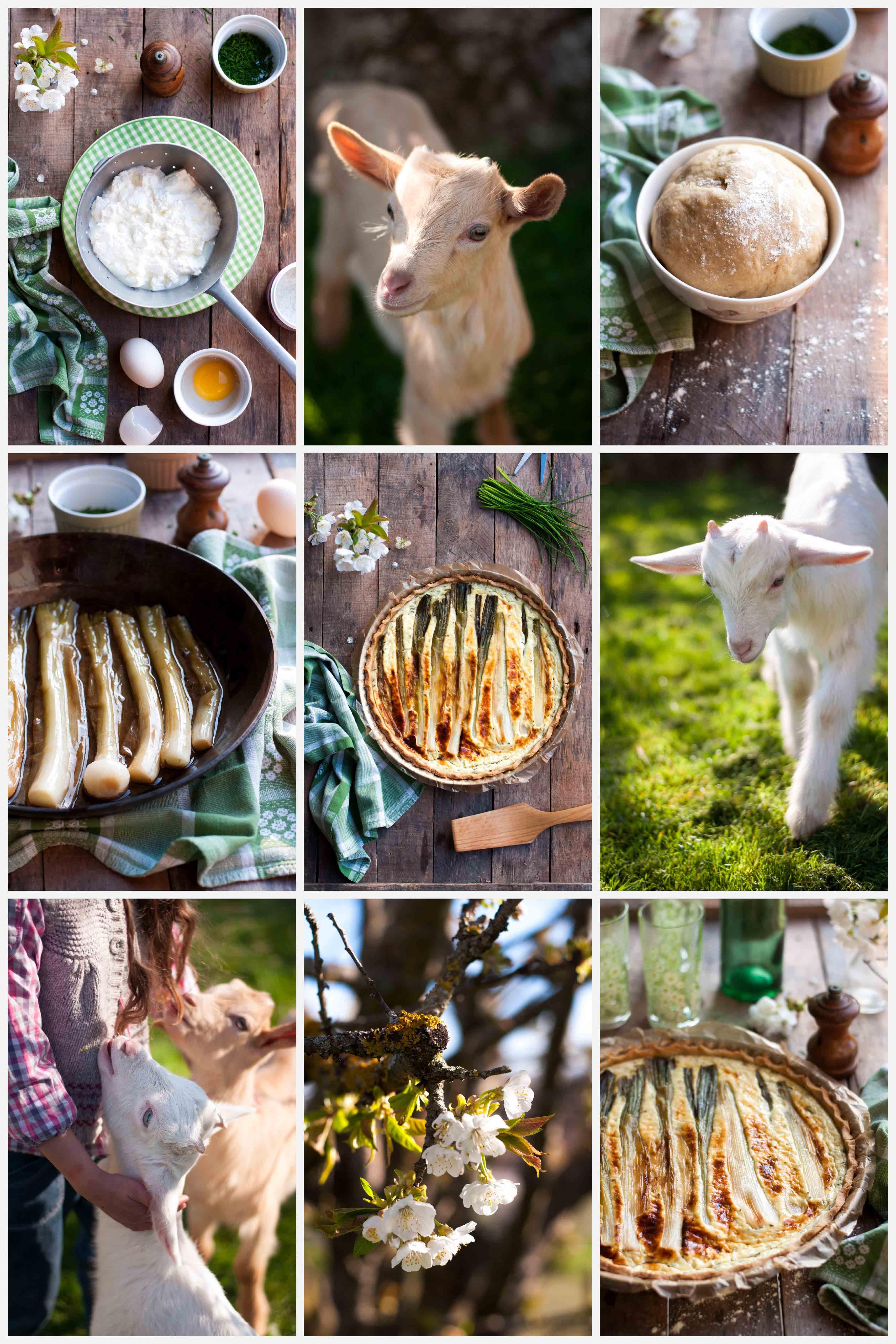 Tarte printanière à la faisselle de chèvre et aux cebettes