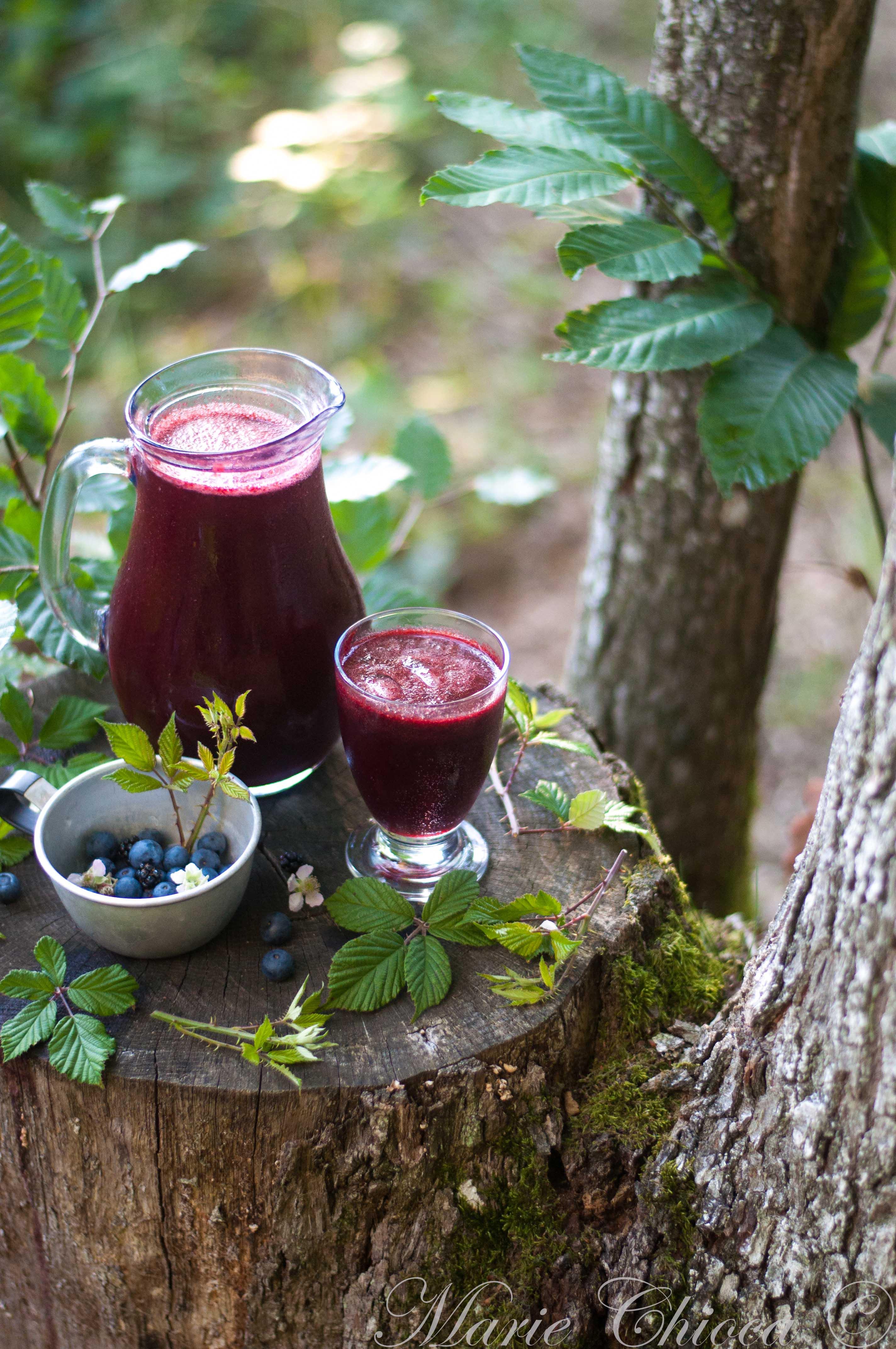 Soda aux baies de la forêt