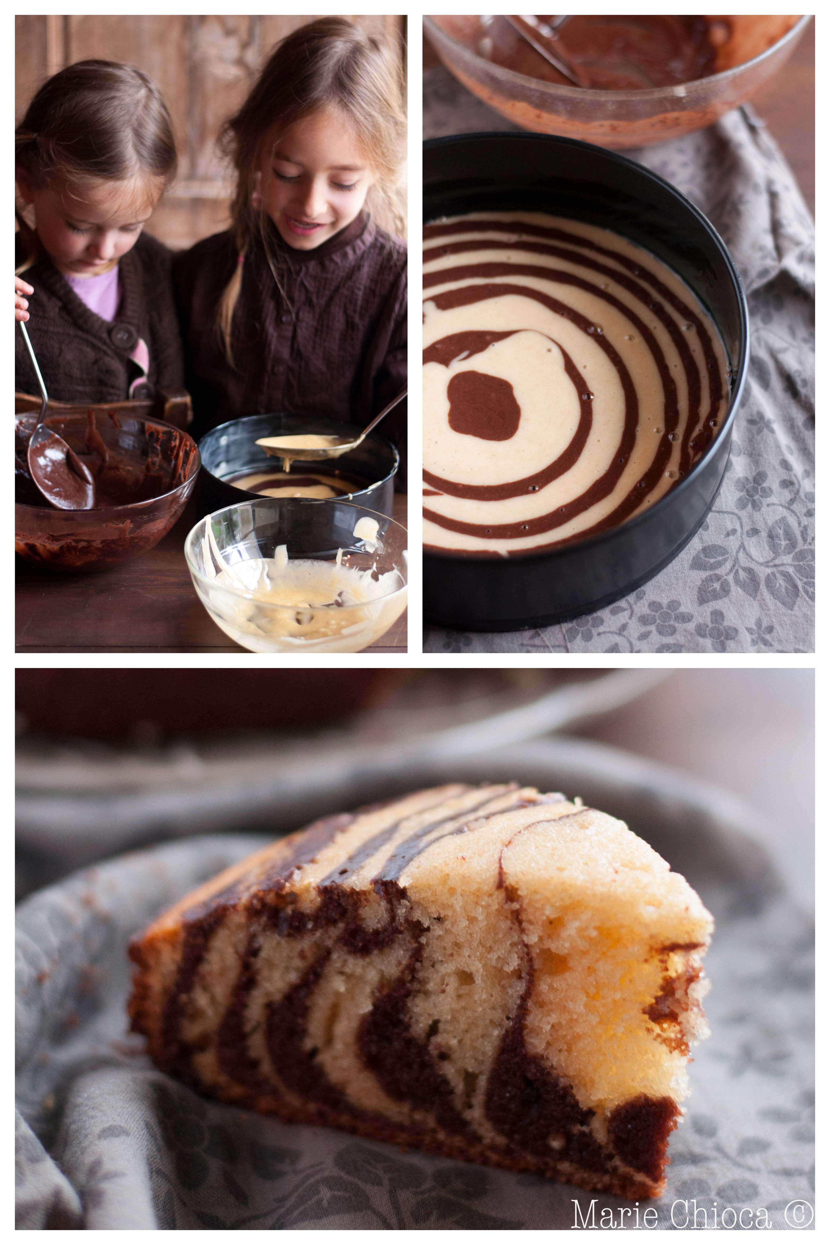 10 gâteau tigré (montage 1)-2