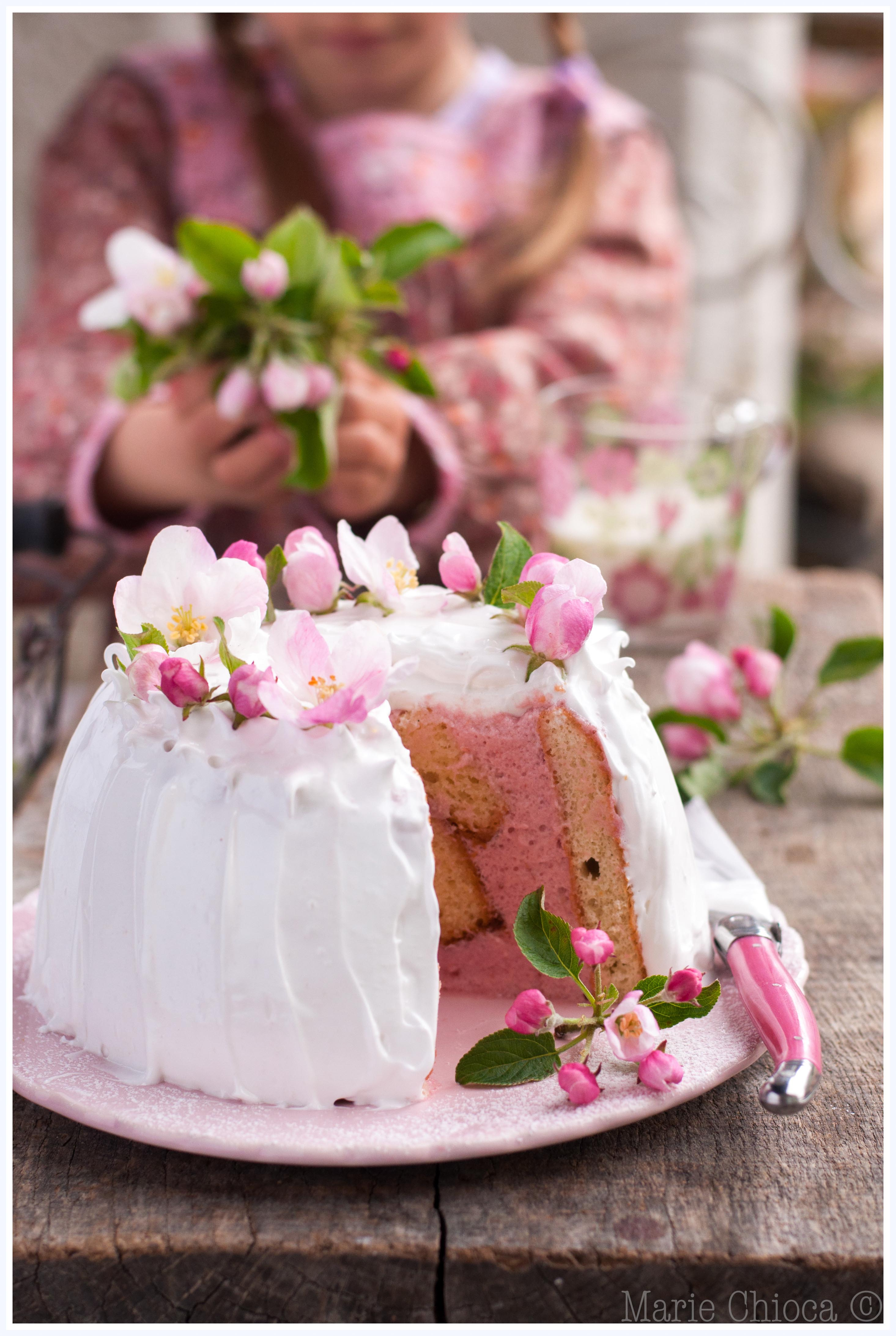 22 Charlotte aux fraises meringuée pour la fête des Mamans 1-2-2
