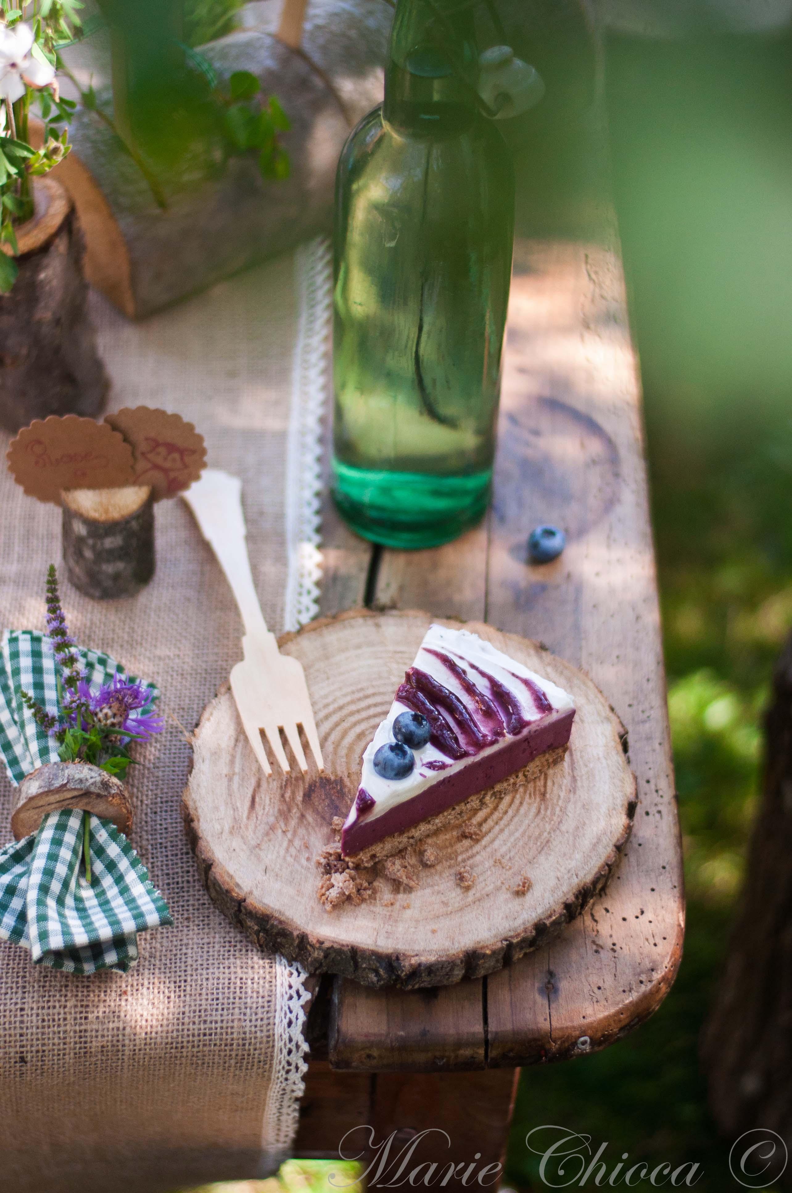grand-cheesecake-aux-fruits-des-bois-PHOTO-POUR-2eme-DOUBLE-PAGE-2