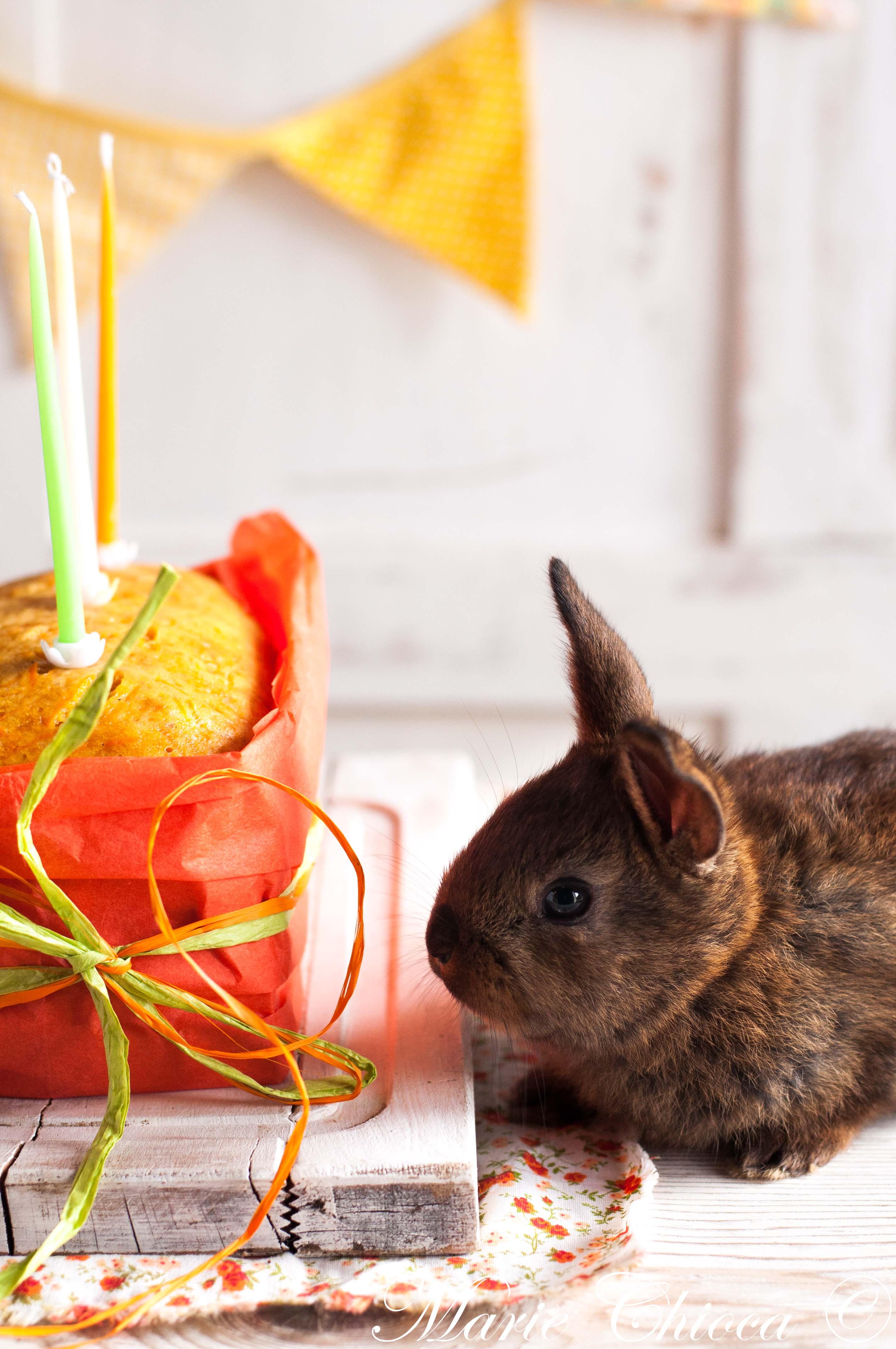 Carrot cake surprise 3