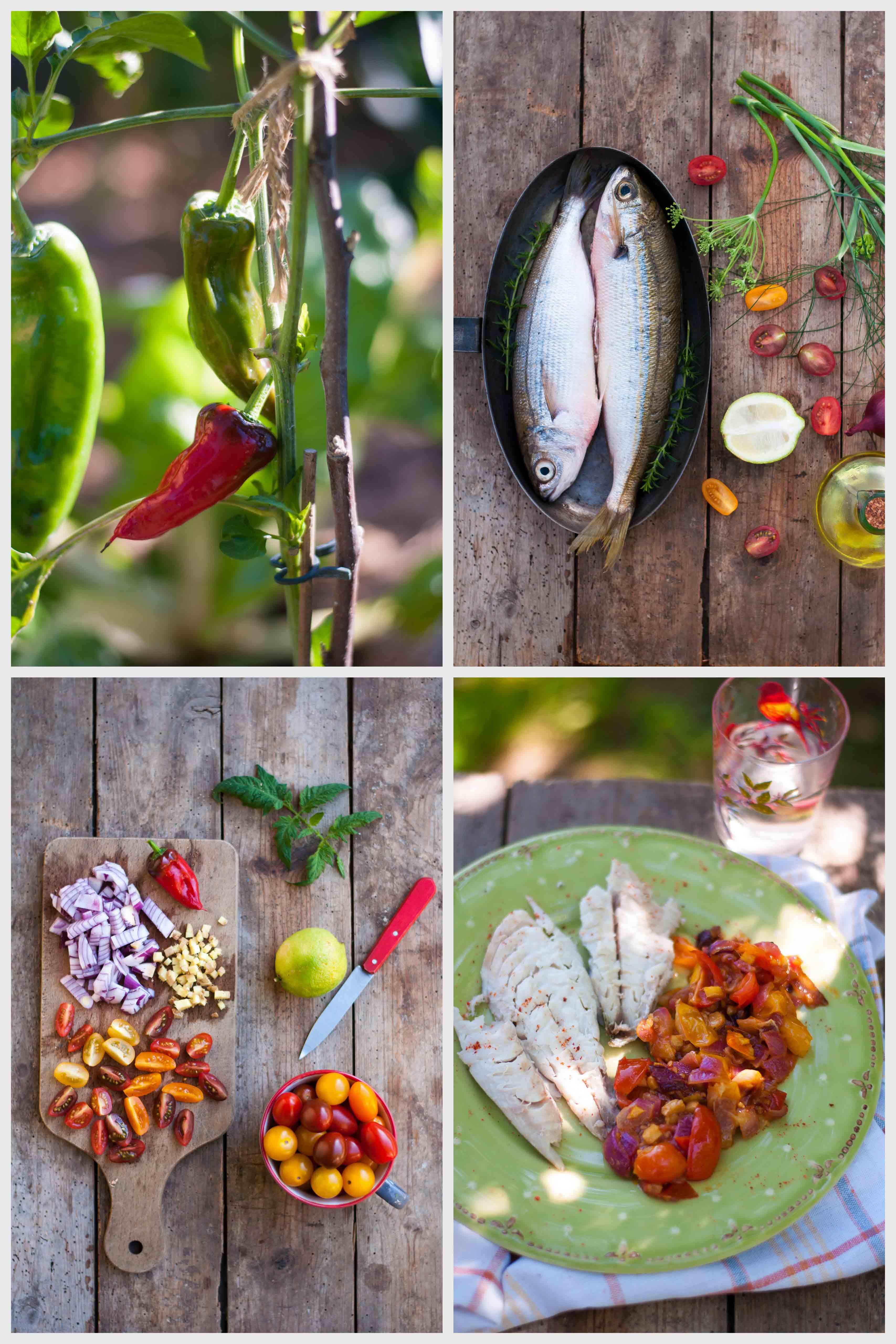 Livre poissons et autres produits de la mer 3
