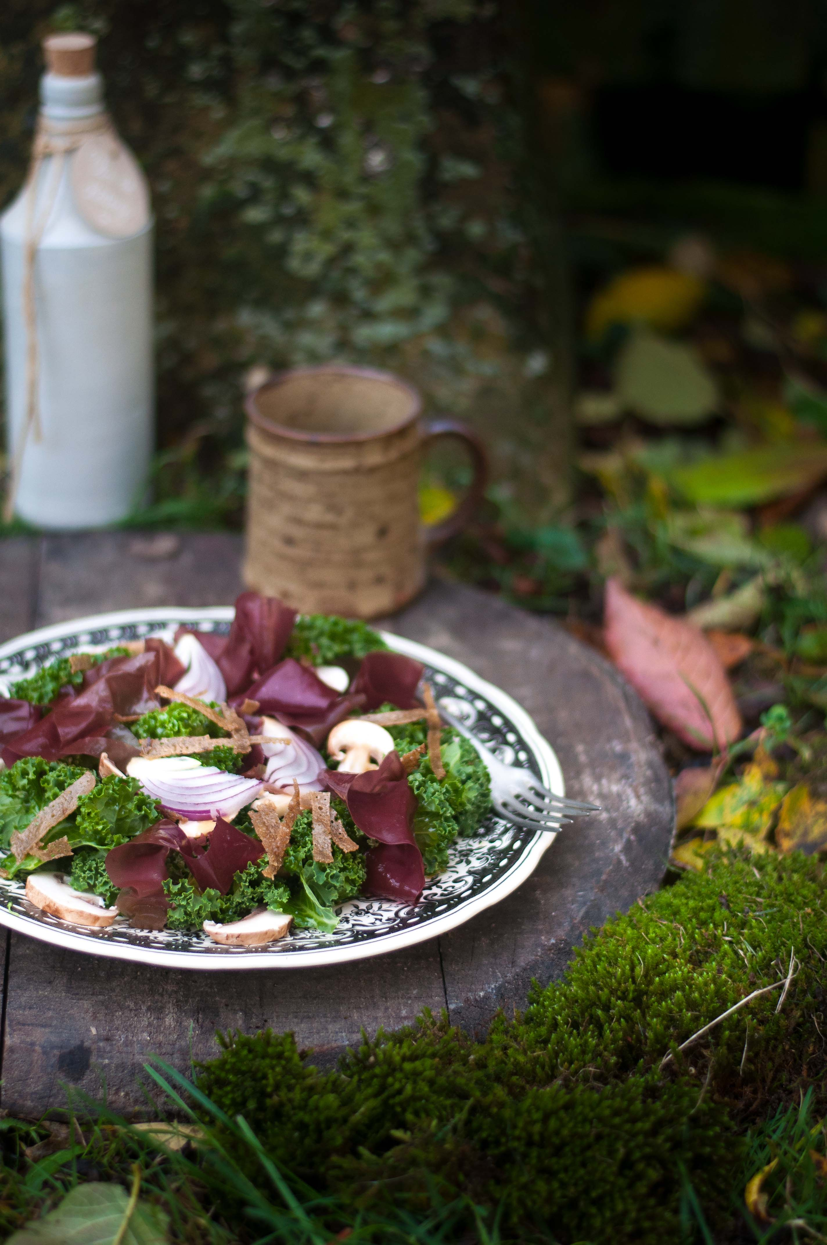 Ma petite saladerie à la maison, Marie Chioca, Terre Vivant9