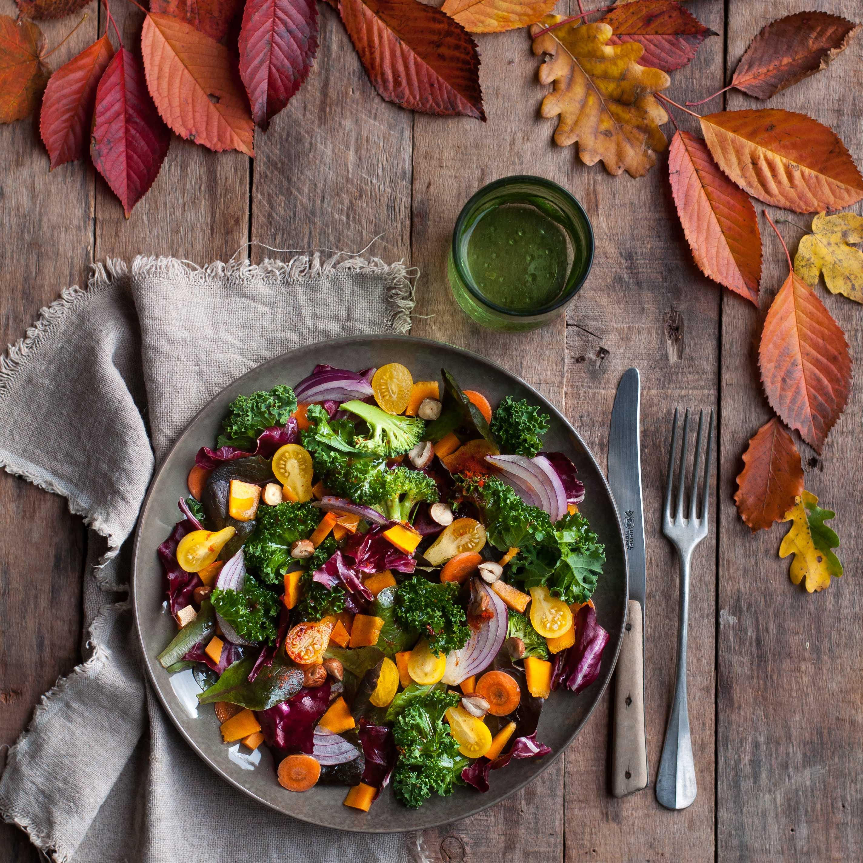 Ma petite saladerie à la maison, Marie Chioca, Terre Vivant10